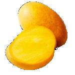 Banganpalli (Benishan) – ZZ – Fresh Mangoes – 877-ZZ-MANGO