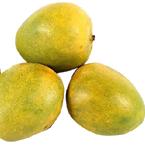 Malgova-Mango